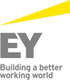 Ernst & Young veteran jobs
